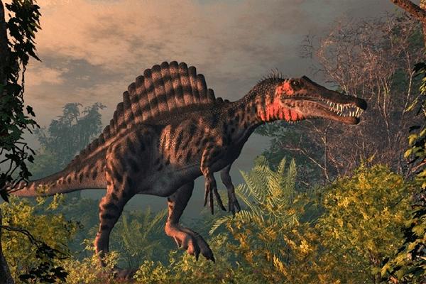 Fødselsdag Spinosaurus